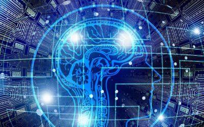 RGPD: un projet de loi déposé pour obliger la Tech à lutter contre les biais des algorithmes